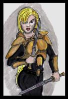 Female Palladin by Andared