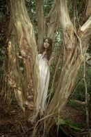 Dryad by LarkVisuals