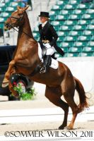 Katie Ruppel Dressage II by zeeplease