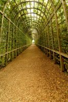 Covered Walkway by tnp651