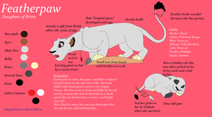 Featherpaw: Reference by BlackWolf1112-ADOPTS