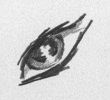 eye by Expoself