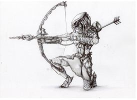 predator archer by 333444555