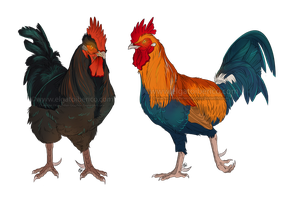 Rooster Commission by Gato-Iberico