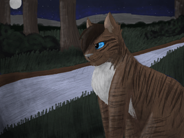 Hawkfrost by CascadingSerenity