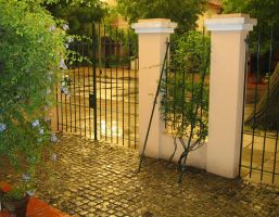 The gate of my house by Aftalion
