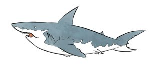 Great White by astro-shark