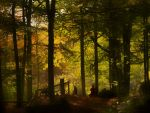 Autumn forest by TheodorAndersson