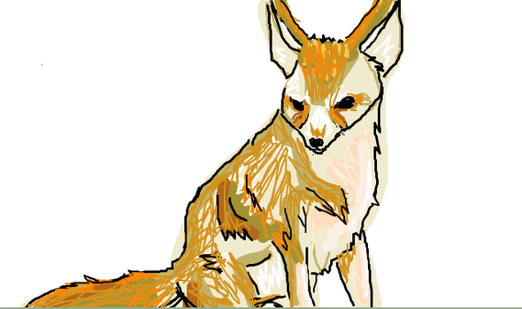 fennec whatever by Norstat