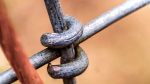 Fence Macro by Mackingster