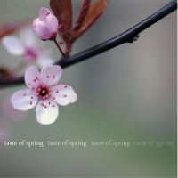 taste of spring 4 by MorkOrk