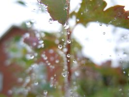 water drops by babyiloveyoutoo