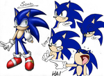 New Sonic Concept by SonicRocksMySocks