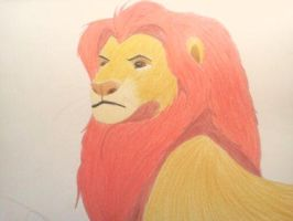 Mufasa by KittyNoodles