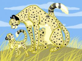 Cheetahs by shelzie