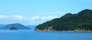 Blue Shikoku by Rea-the-squirrel