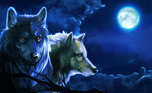Wolves by Brevis--art