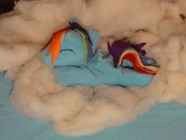 Rainbow Dash plushie 1 by araseses