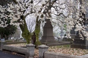 The Laurel Hill Cemetery 7 by FairieGoodMother