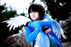 Conceptual_Broken Wing by NaruKids