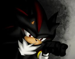 Shadow the hedgehog... by 6601