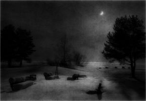 Winter's night sorrow by freezing---moon