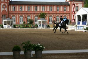 Dressage Competition Stock 20 by LuDa-Stock