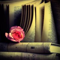Rose On Book . II by Somebody--else