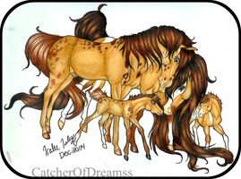 Crusoe and His Family by CatcherOfDreamss