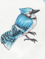 Blue Jay Way by AliceAlexia