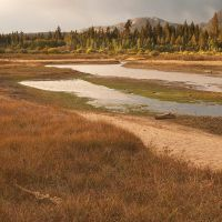 Taylor Creek Wetland by madrush08