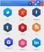 9 Hexagon Social Media Icons Free PSD by SynPredator
