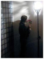 lights N roses by isca