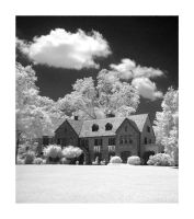 Sunny Gables : Infrared by GeneAut
