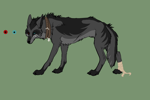 huntress ref by VictoriWind