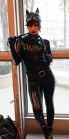 NYCC'14 Catwoman C I by zer0guard