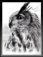 Eagle Owl Sketch by AlyssaC-12