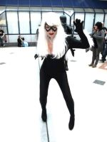 Black Cat by crumbsinmyteacup