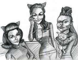 The three Batman Catwomen by Caricature80
