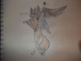 Character I'm going to try get by Jeodthewolf