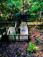 Going Down by annieheart12