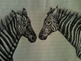Zebras! by SilverNiteWolf