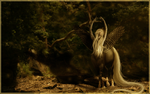 The Forest Dancer by SilverCoast