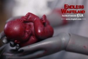 Detail of fetus via Eva limited by Ringdoll