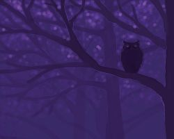 Owl - night by sc189