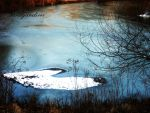 Blue Ice Pond by sandyandi146