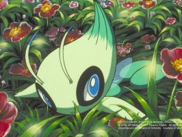 I am a Celebi by Shalialove