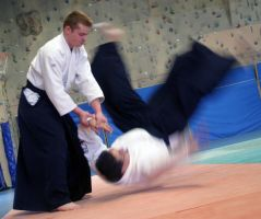 Aikido kote gashi by chavi-dragon
