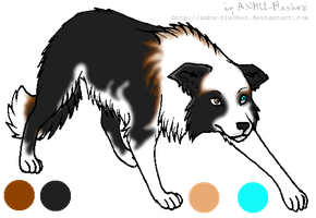 Nanurtaliks border collie by Palace-Of-Dreams