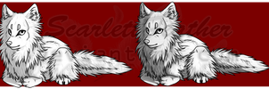 .Premade. Really Fluffy Wolf by ScarlettFeather